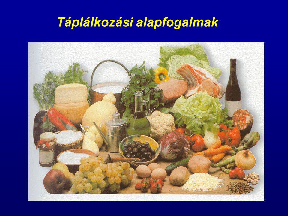 Táplálkozási alapfogalmak