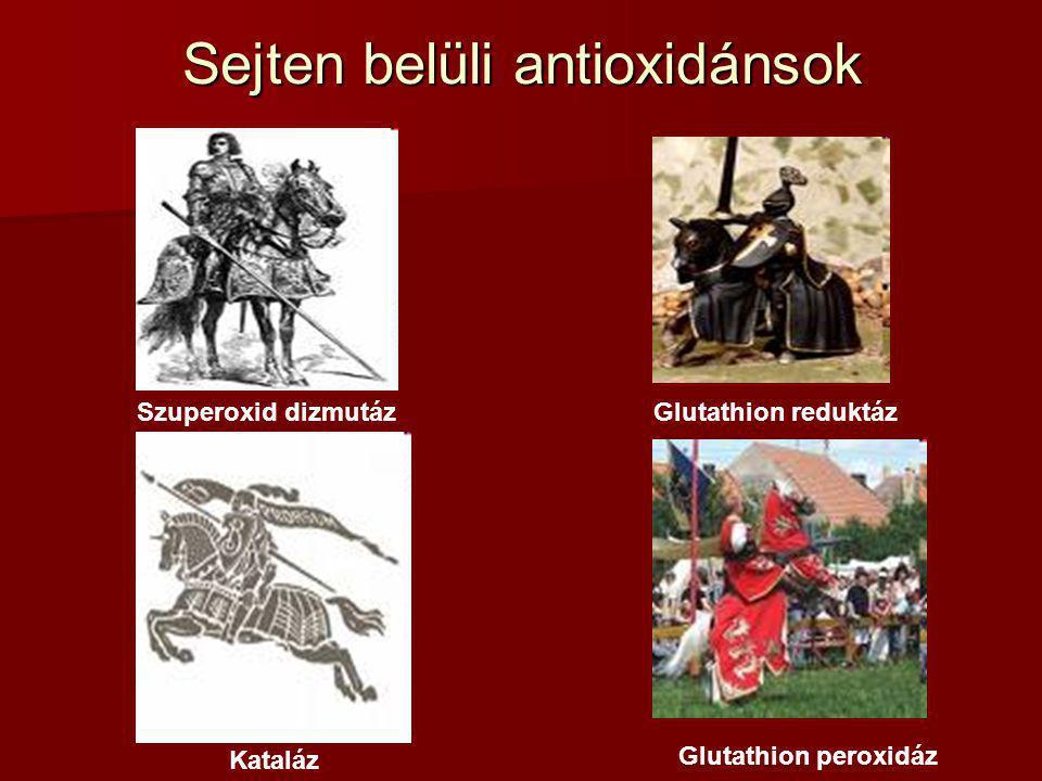 Sejten belüli antioxidánsok