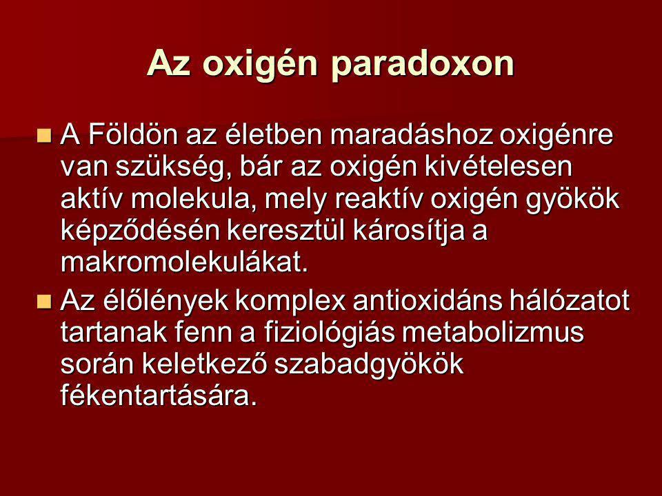 Az oxigén paradoxon
