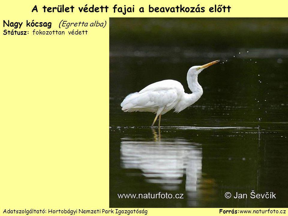Adatszolgáltató: Hortobágyi Nemzeti Park Igazgatóság
