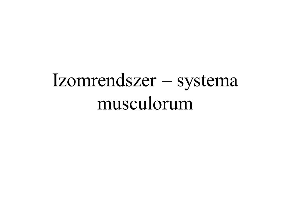 Izomrendszer – systema musculorum