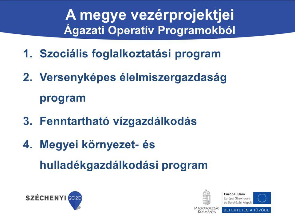 A megye vezérprojektjei Ágazati Operatív Programokból