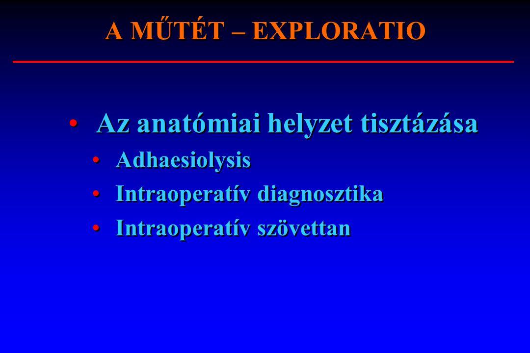 Az anatómiai helyzet tisztázása
