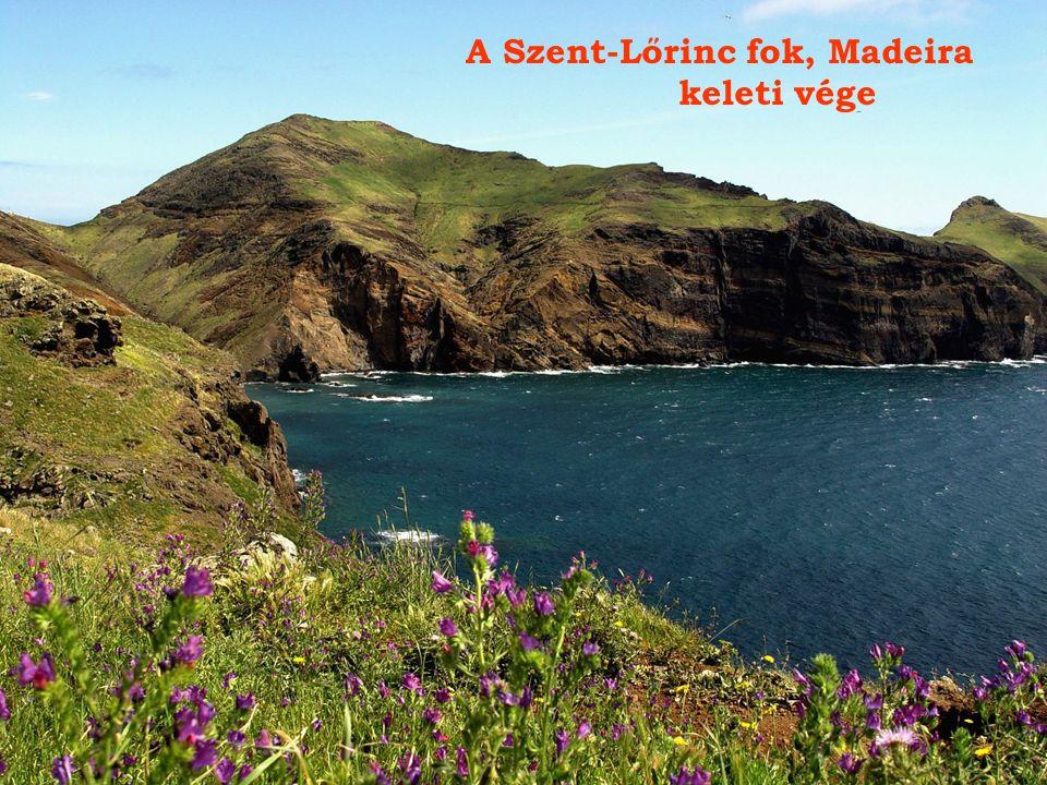 A Szent-Lőrinc fok, Madeira