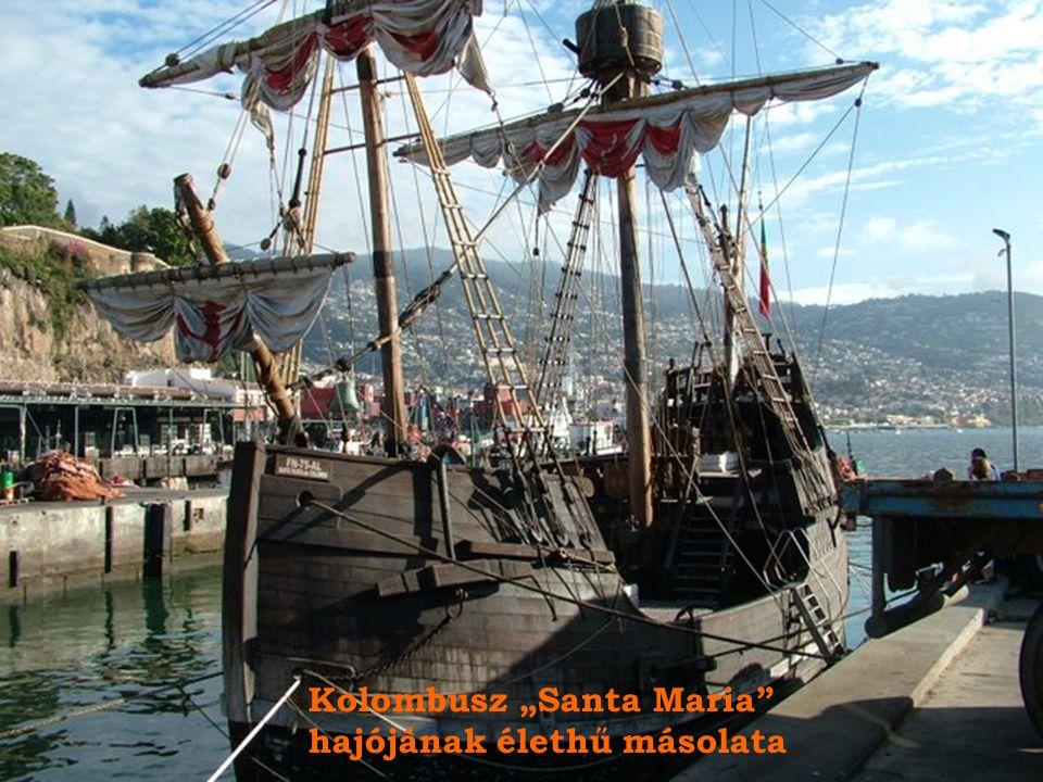 "Kolombusz ""Santa Maria"