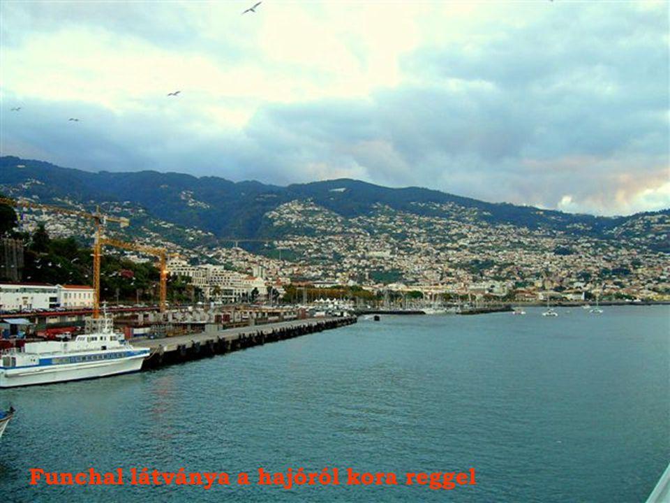 Funchal látványa a hajóról kora reggel