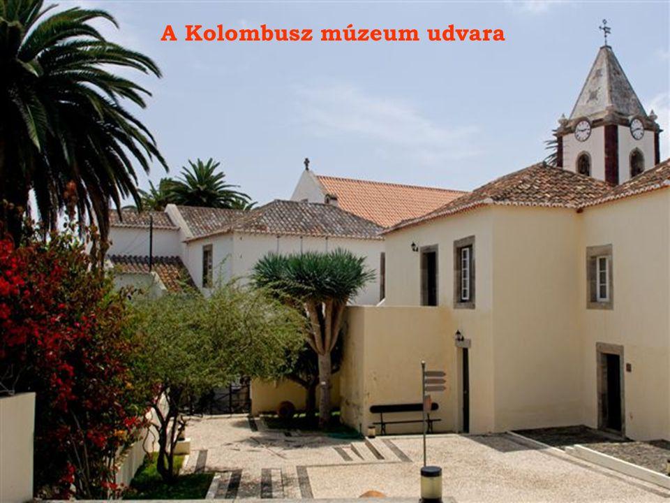 A Kolombusz múzeum udvara