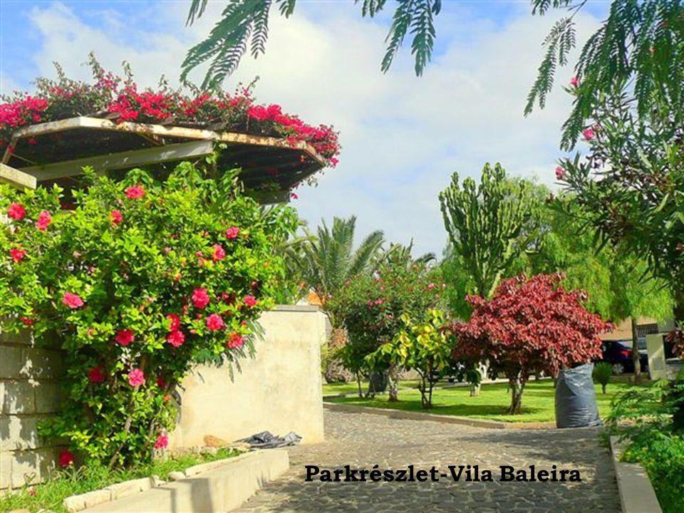 Parkrészlet-Vila Baleira