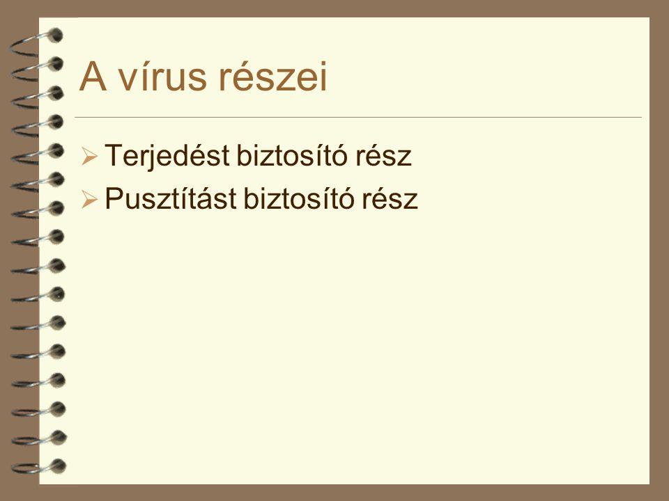 A vírus részei Terjedést biztosító rész Pusztítást biztosító rész