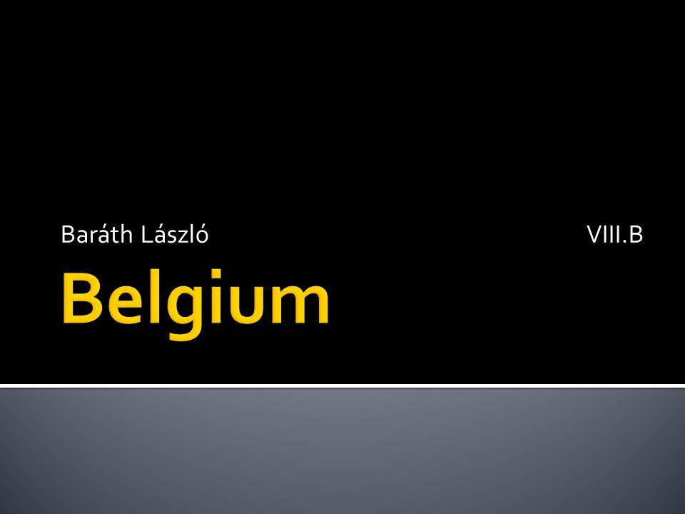 Baráth László VIII.B Belgium