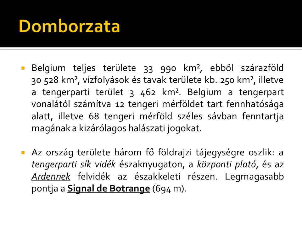 Domborzata