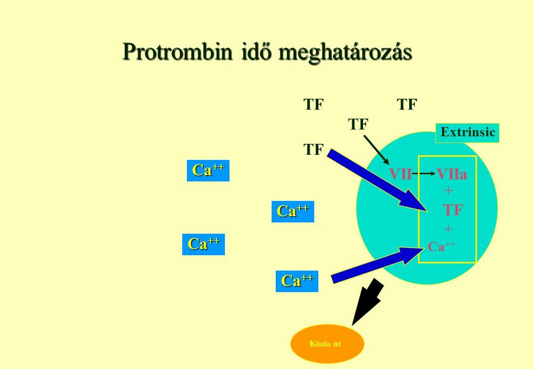 Protrombin idő meghatározás
