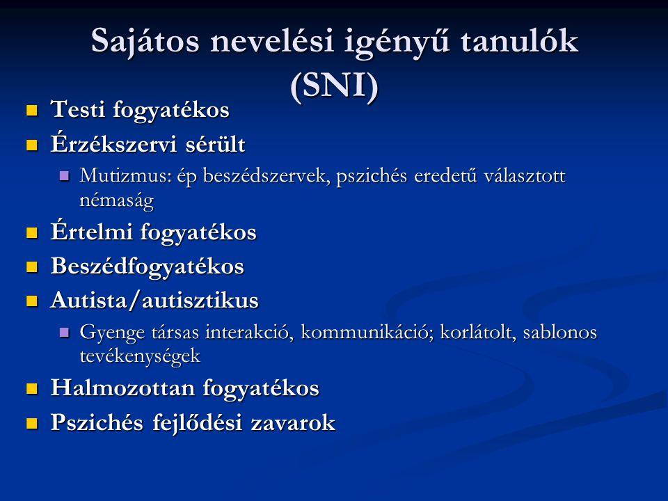 Sajátos nevelési igényű tanulók (SNI)