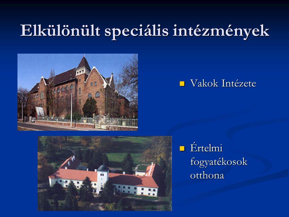 Elkülönült speciális intézmények