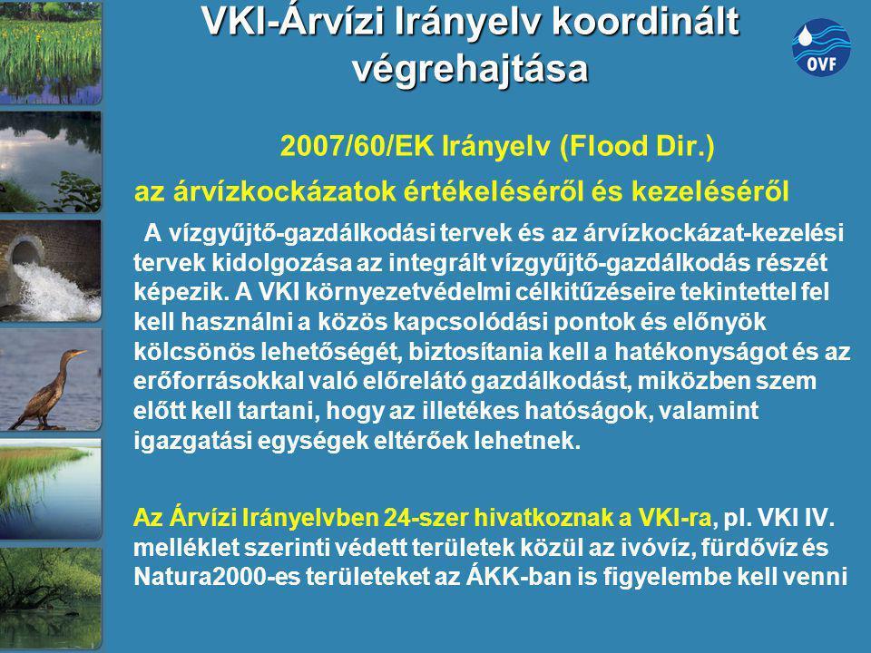 VKI-Árvízi Irányelv koordinált végrehajtása