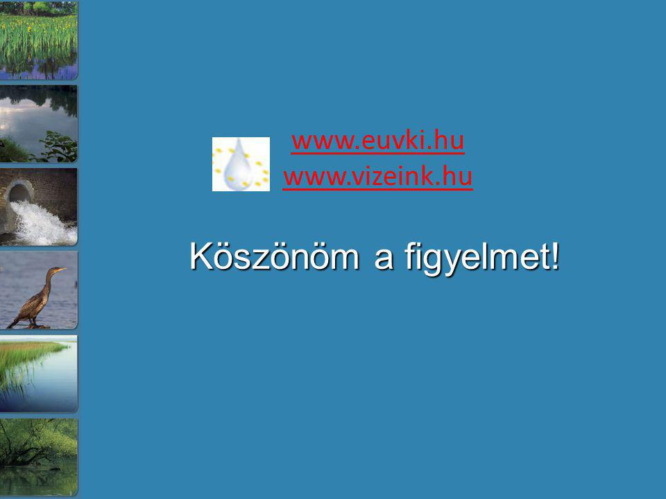 www.euvki.hu www.vizeink.hu Köszönöm a figyelmet!