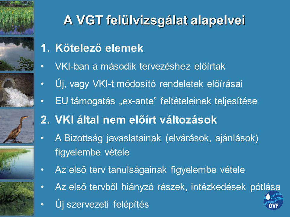 A VGT felülvizsgálat alapelvei