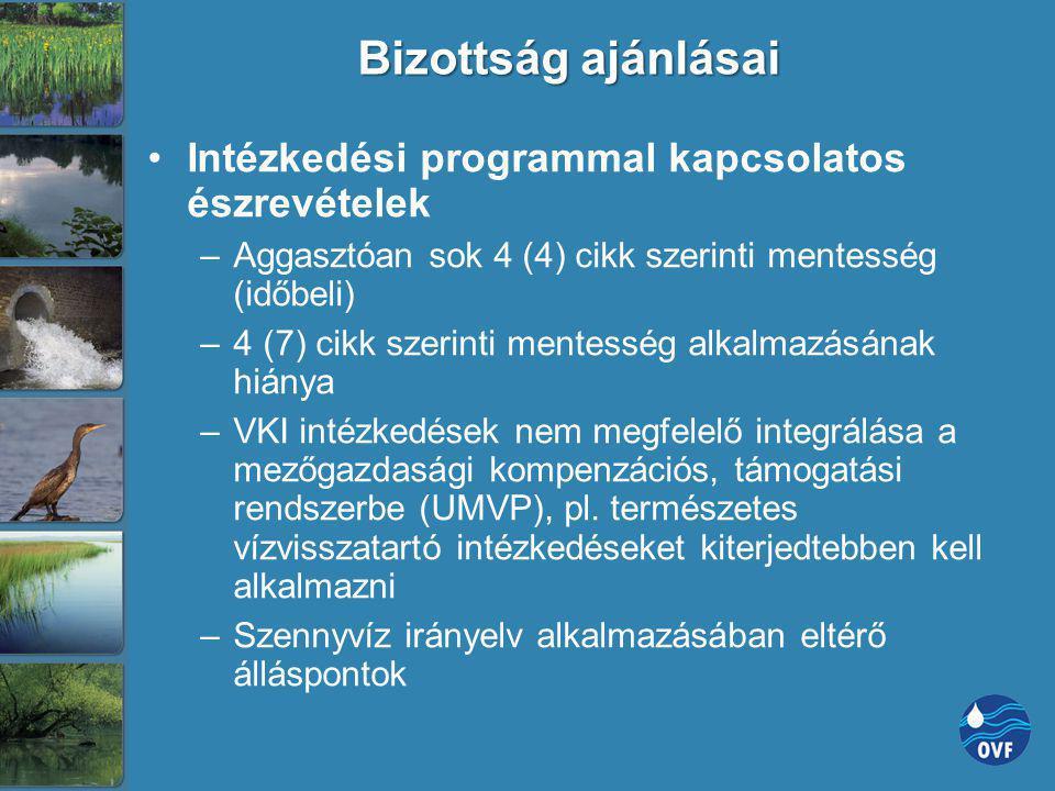 Bizottság ajánlásai Intézkedési programmal kapcsolatos észrevételek