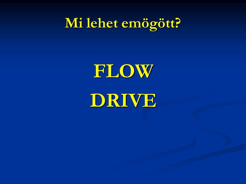 Mi lehet emögött FLOW DRIVE