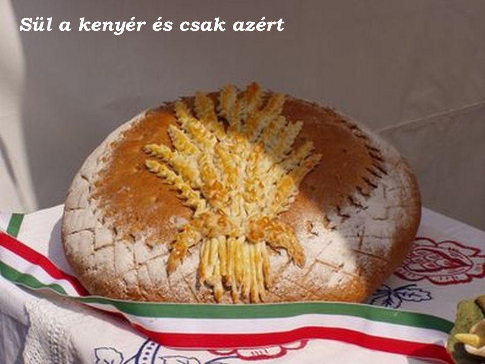 Sül a kenyér és csak azért