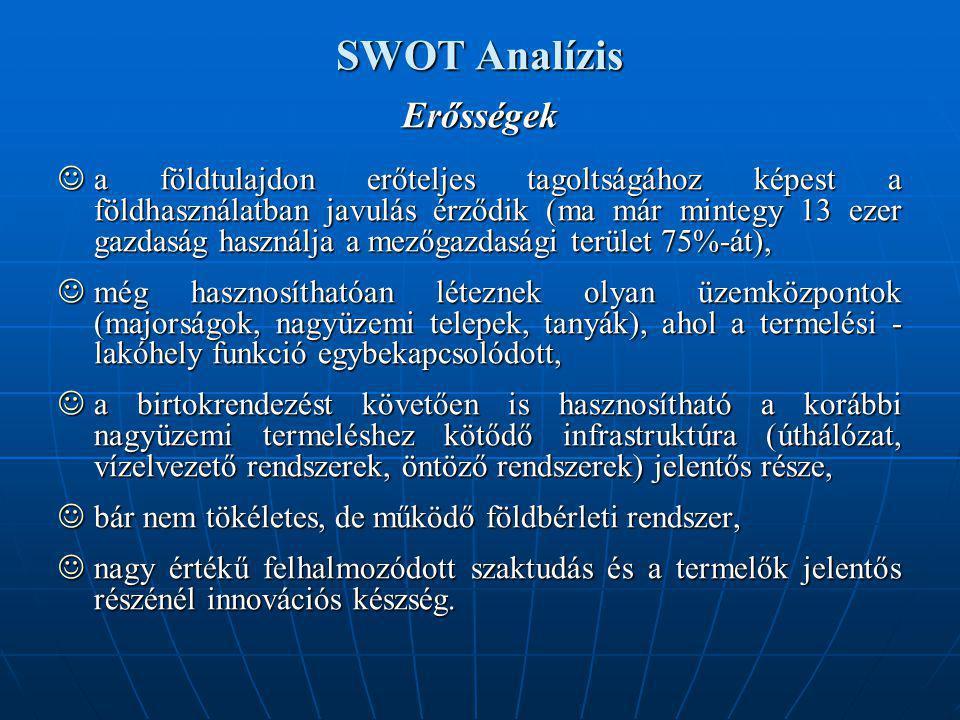 SWOT Analízis Erősségek