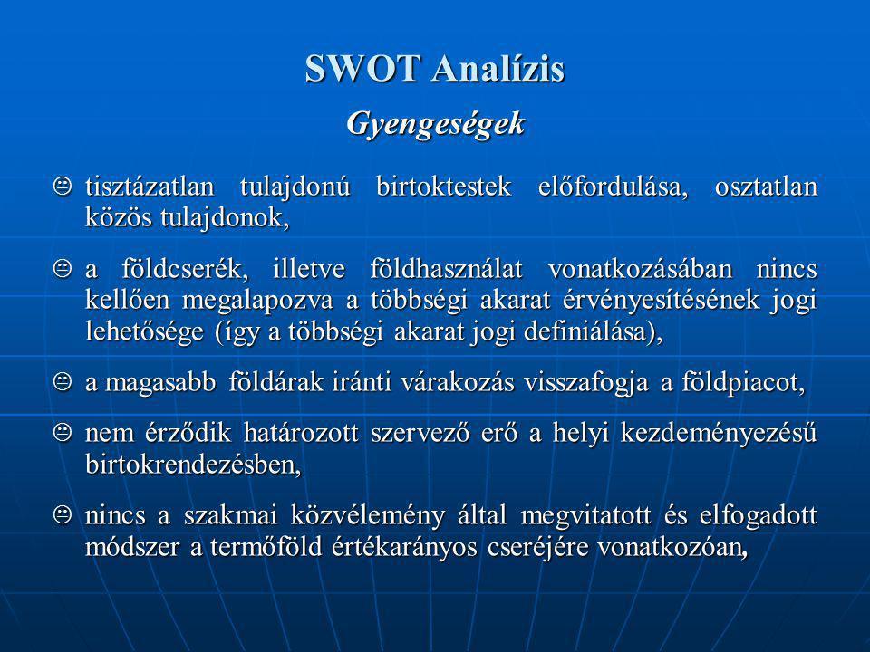 SWOT Analízis Gyengeségek