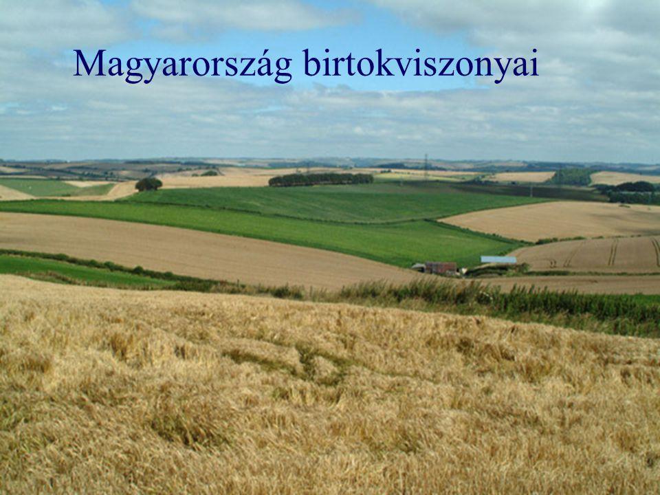 Magyarország birtokviszonyai