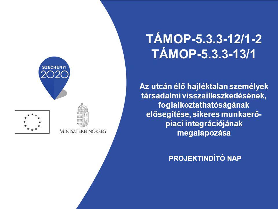 TÁMOP-5.3.3-12/1-2 TÁMOP-5.3.3-13/1 Az utcán élő hajléktalan személyek társadalmi visszailleszkedésének, foglalkoztathatóságának elősegítése, sikeres munkaerő-piaci integrációjának megalapozása