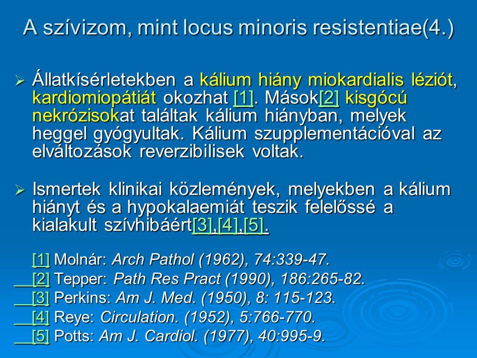 A szívizom, mint locus minoris resistentiae(4.)