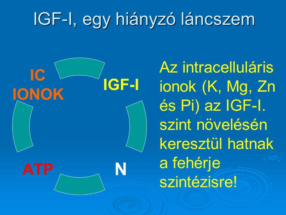 IGF-I, egy hiányzó láncszem