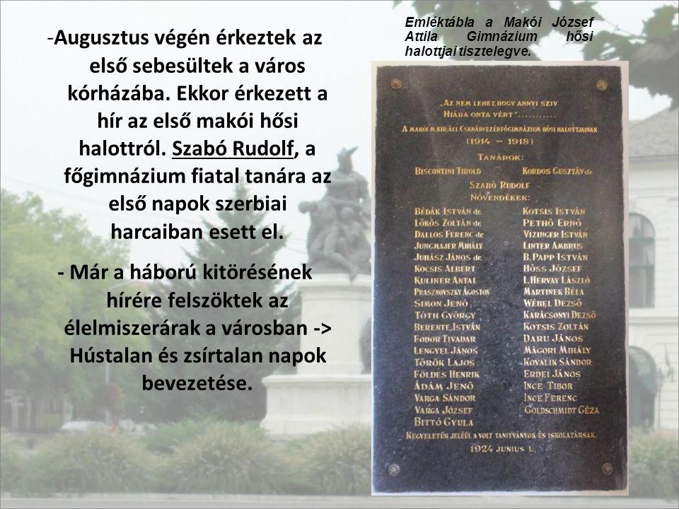 Emléktábla a Makói József Attila Gimnázium hősi halottjai tisztelegve.