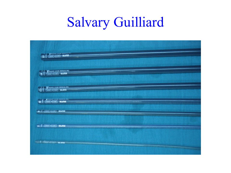 Salvary Guilliard
