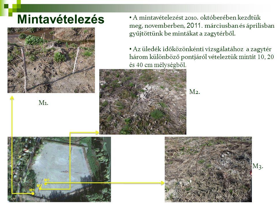 Mintavételezés A mintavételezést 2010. októberében kezdtük meg, novemberben, 2011. márciusban és áprilisban gyűjtöttünk be mintákat a zagytérből.