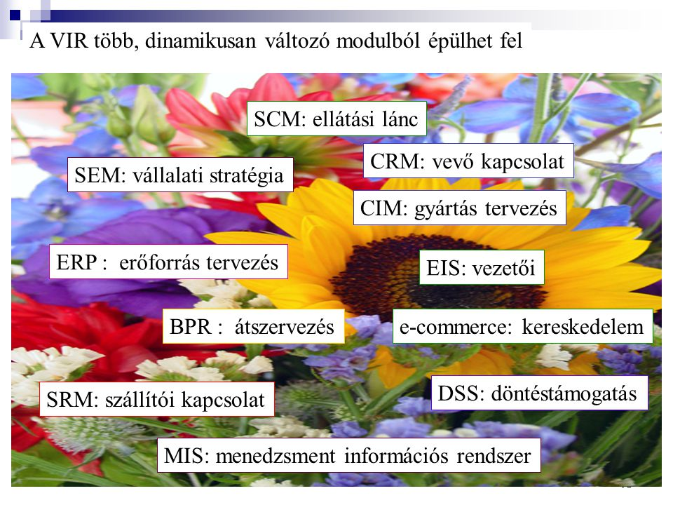 A VIR több, dinamikusan változó modulból épülhet fel