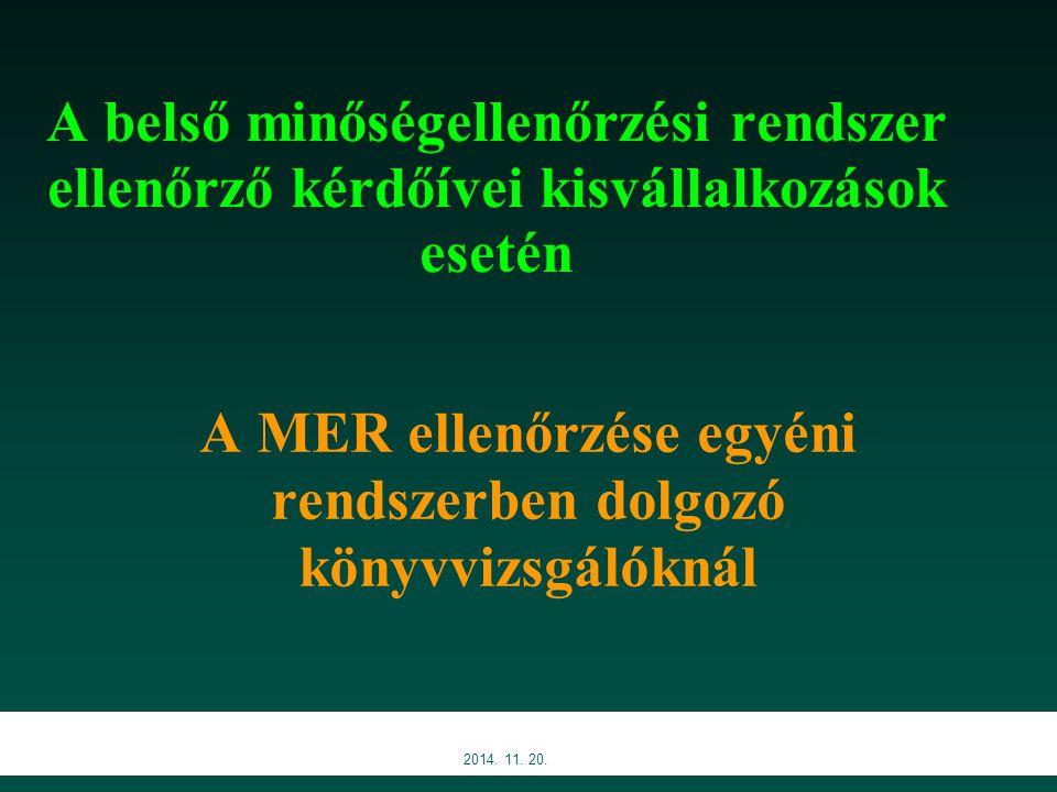 A MER ellenőrzése egyéni rendszerben dolgozó könyvvizsgálóknál