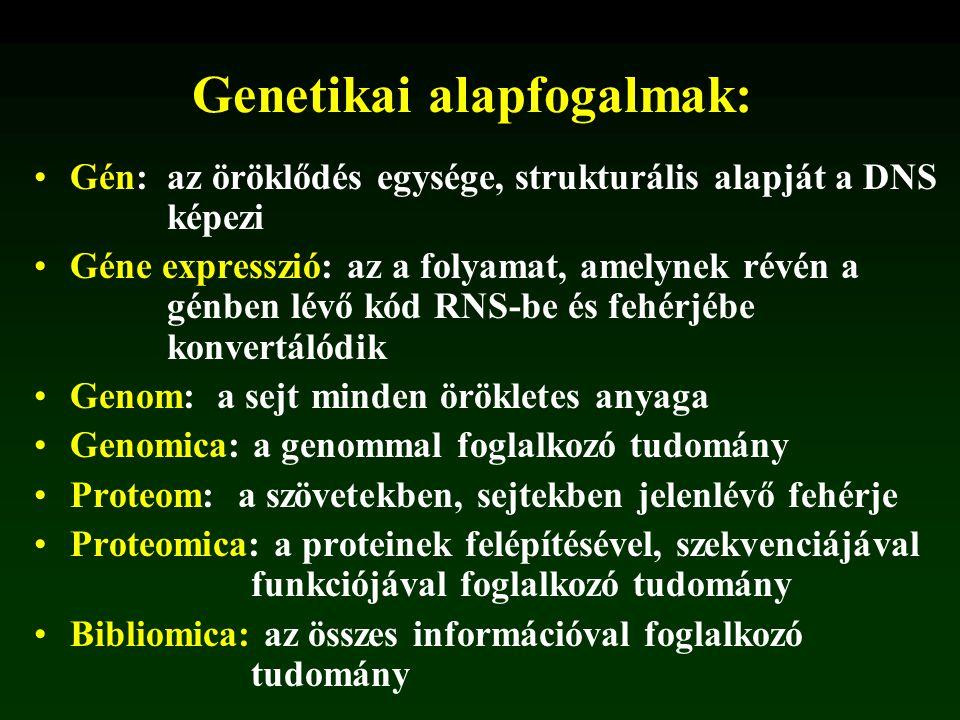 Genetikai alapfogalmak: