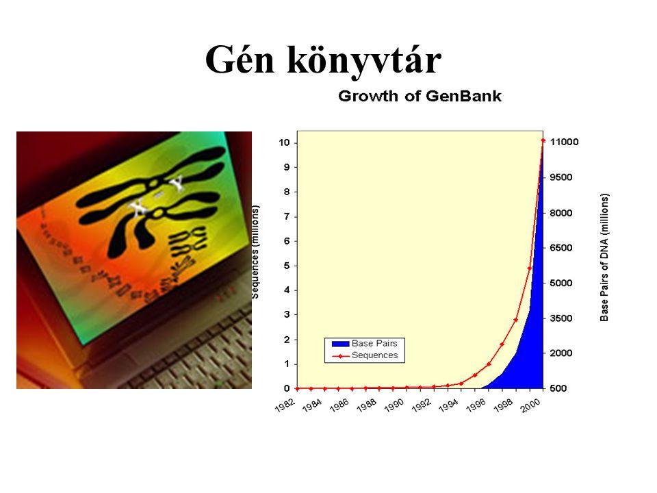 Gén könyvtár