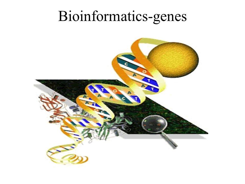 Bioinformatics-genes