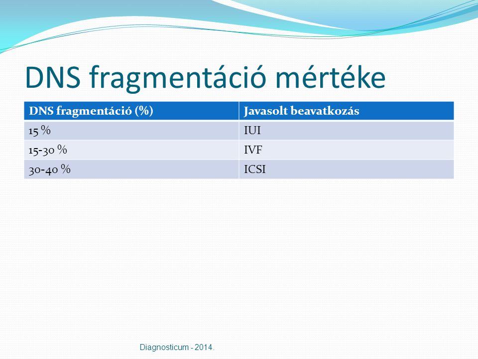 DNS fragmentáció mértéke
