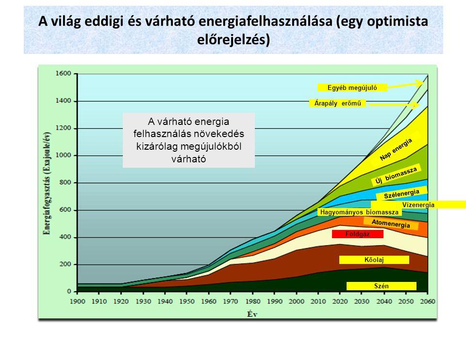 Hagyományos biomassza