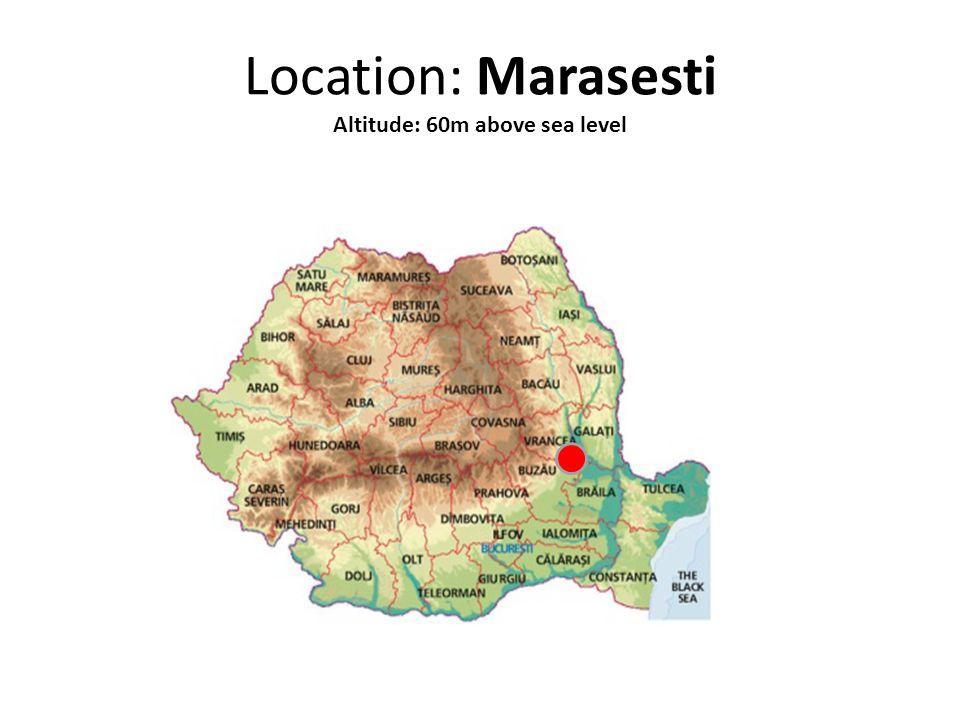 Location: Marasesti Altitude: 60m above sea level