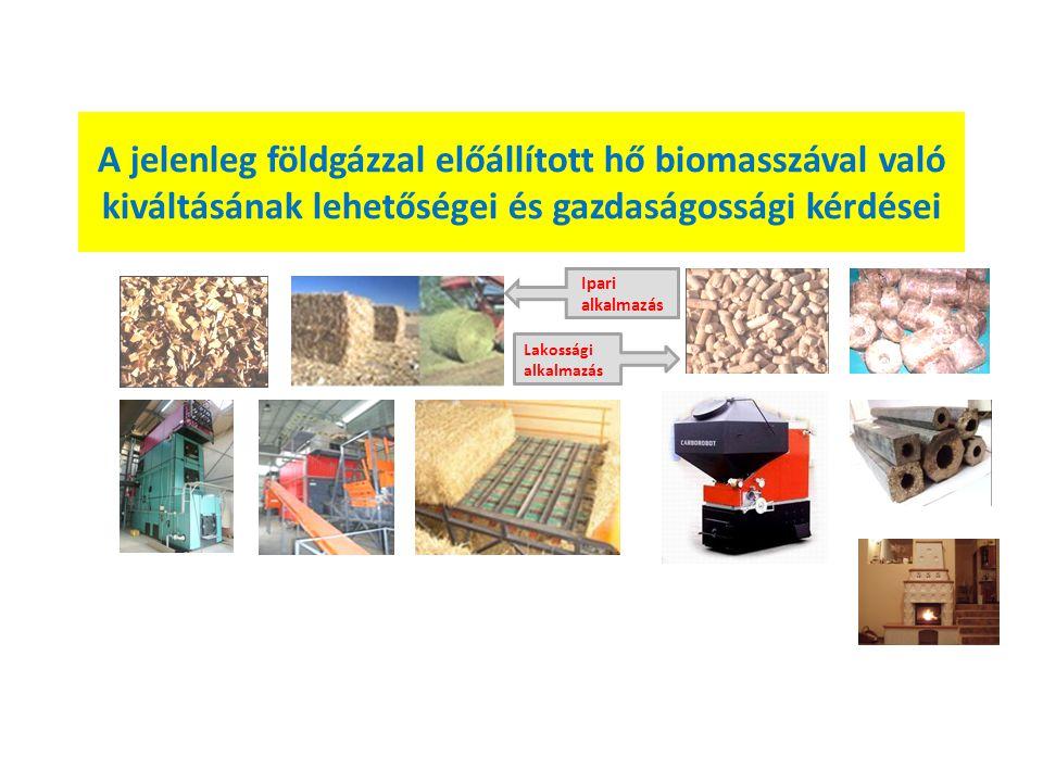 A jelenleg földgázzal előállított hő biomasszával való kiváltásának lehetőségei és gazdaságossági kérdései