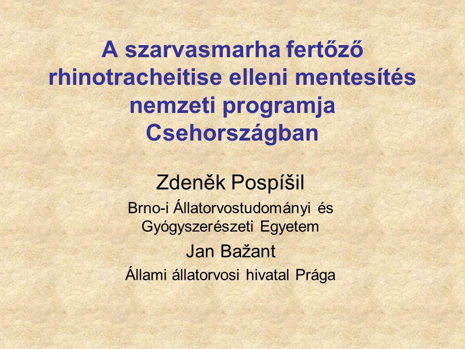 A szarvasmarha fertőző rhinotracheitise elleni mentesítés nemzeti programja Csehországban
