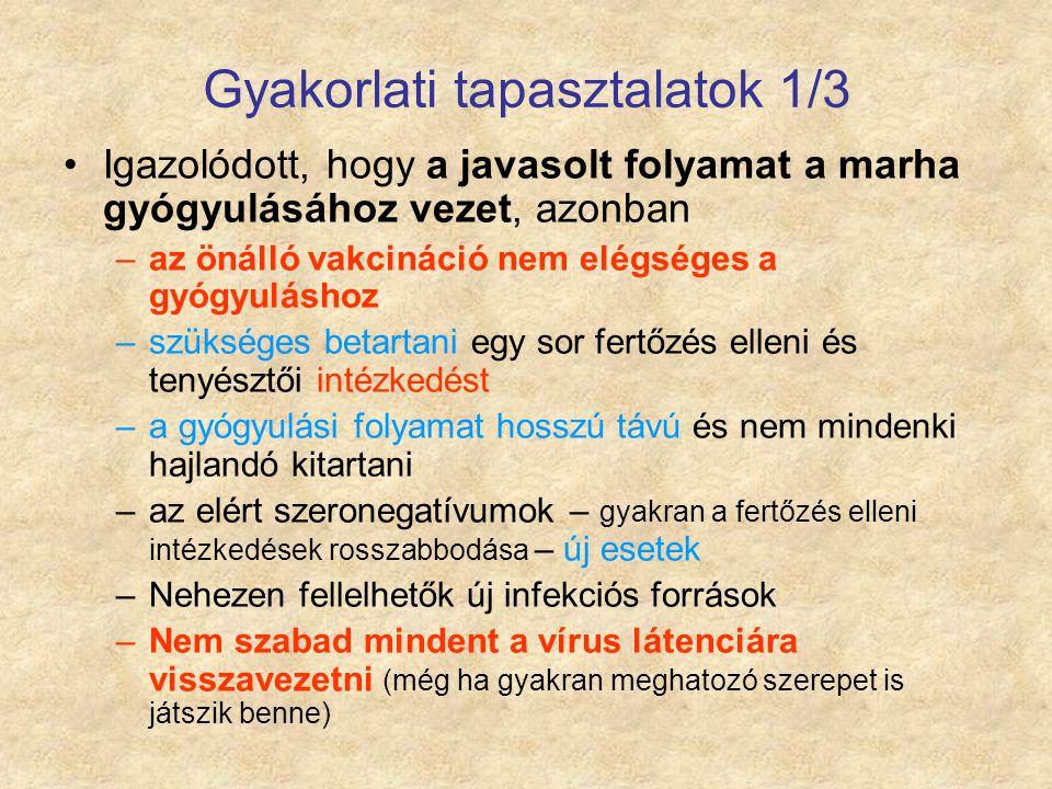 Gyakorlati tapasztalatok 1/3