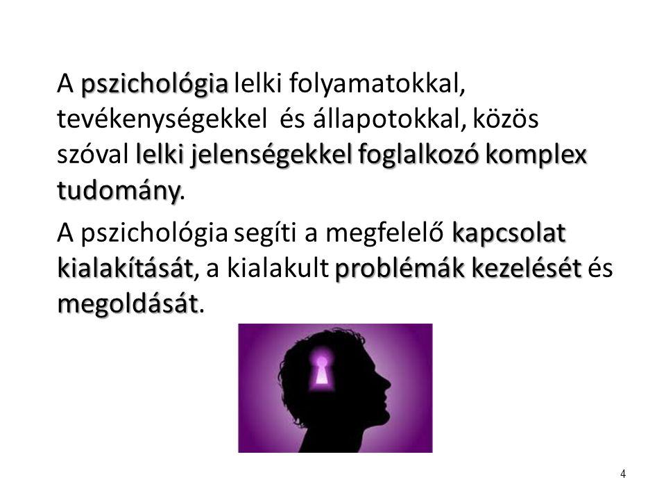 A pszichológia lelki folyamatokkal, tevékenységekkel és állapotokkal, közös szóval lelki jelenségekkel foglalkozó komplex tudomány. A pszichológia segíti a megfelelő kapcsolat kialakítását, a kialakult problémák kezelését és megoldását.