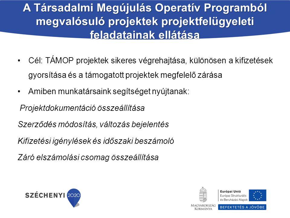 A Társadalmi Megújulás Operatív Programból megvalósuló projektek projektfelügyeleti feladatainak ellátása