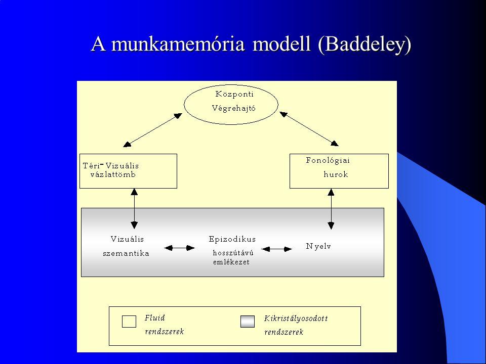 A munkamemória modell (Baddeley)