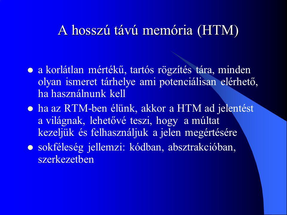 A hosszú távú memória (HTM)