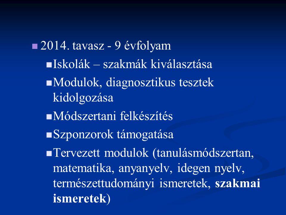 2014. tavasz - 9 évfolyam Iskolák – szakmák kiválasztása. Modulok, diagnosztikus tesztek kidolgozása.