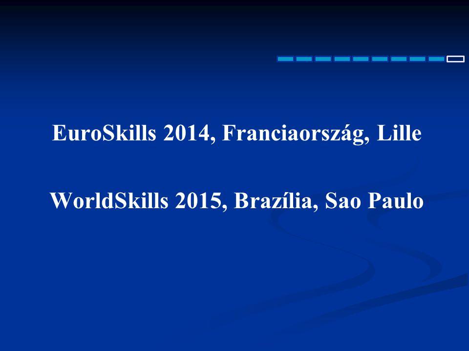 EuroSkills 2014, Franciaország, Lille WorldSkills 2015, Brazília, Sao Paulo